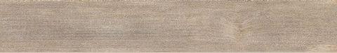 Pequod 161B RM 16,5x100